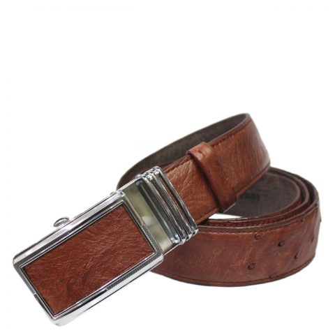 Ostrich Leather Belt E602b